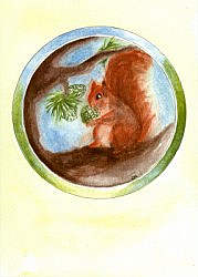 Postcard: Squirrel
