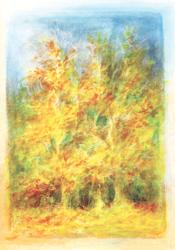 Postcard: October: October Trees