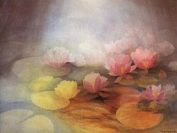 Water-lilies: Extra large folded card