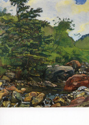 Postcard: Stream with tree and rocks