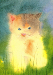 Postcard: Little Kitten