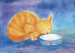 Postcard: Cat