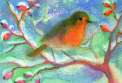 Postcard: Winter Robin