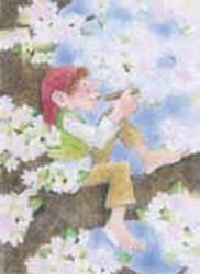 Postcard: Apple blossom