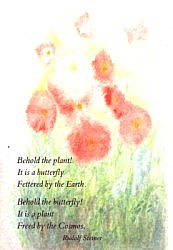 Postcard: Behold the plant!
