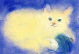 Postcard: Cat playing
