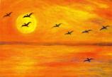 Postcard: Cranes flying over lake