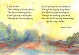 Postcard: I seek within