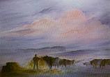Postcard: Feeding the Cattle