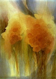 Postcard: Poppies with corn