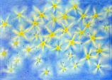 Advent Stars: Small Advent Calendar