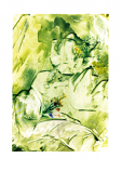 Folded card: Christmas Rose