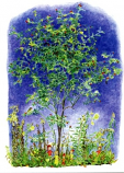 Postcard: Autumn lights