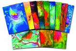 Angela Koconda: set of 12 postcards