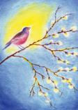 Postcard: Bird sitting on branch