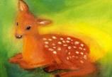 Postcard: Resting roe