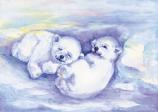 Postcard: Polar bear cubs playing