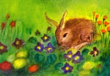 Postcard: Spring – Easterhare
