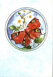 Folded card: Butterfly