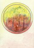 Postcard: Gathering firewood