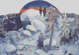 Christmas Roses Nordic: Advent Calendar