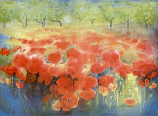Postcard: Field of red poppies