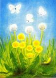 Postcard: Caterpillars and Butterflies