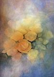 Light through Roses: Extra large folded card