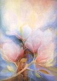 Magnolia: Extra large folded card