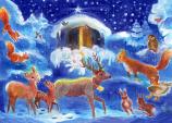 Christmas with the Animals: Medium Advent Calendar