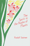 The Spirit in the Realm of Plants