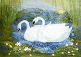 Folded card: Swans at Sunrise