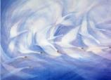 Swans: Large folded card