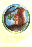 Folded card: Squirrel