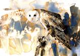 The Owl Christmas Card