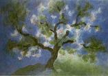 Postcard: Apple blossoms